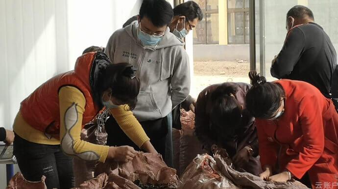 2020年10月,云账户团队调研新疆和田地区木耳种植加工情况。
